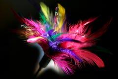 Gekleurde veren stock fotografie