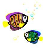 Gekleurde Vissen Stock Afbeelding