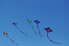 Gekleurde vliegers Royalty-vrije Stock Foto's
