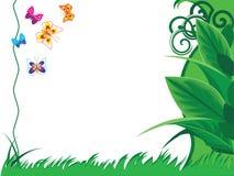 Gekleurde vlinders Royalty-vrije Stock Foto