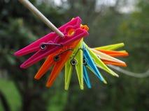 Gekleurde Wasknijpers Royalty-vrije Stock Afbeeldingen