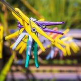 Gekleurde wasknijpers openlucht Stock Foto