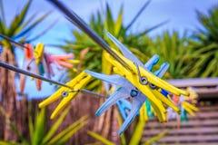 Gekleurde wasknijpers openlucht Stock Fotografie