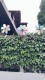 Gekleurde windmolens ðŸ'šðŸ'™ 🛠ðŸ'œâ  ¤ Royalty-vrije Stock Foto