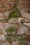 Geknackte und gealterte Betonmauer mit Schaden Stockfoto