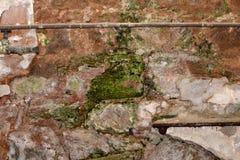 Geknackte und gealterte Betonmauer mit Schaden Lizenzfreie Stockfotos