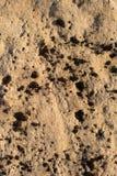 Geknackter versteinerter Lehm bedeckt mit Moos als Hintergrund stockbilder