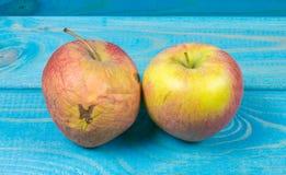 Geknitterter, fauler Apfel auf blauem Hintergrund Abschluss oben lizenzfreie stockfotos