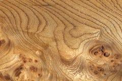 Geknoopte Korrelige Houten Textuur stock fotografie