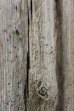 Geknotetes Holz Stockbild