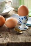 Gekochte Eier Lizenzfreies Stockbild