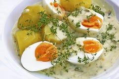 Gekochte Eier in der Senfsoße Stockfoto
