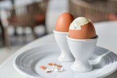 Gekochte Eier im Eierbecher Stockfoto