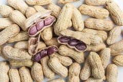 Gekochte Erdnüsse Stockbild