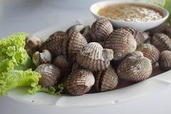 Gekochte Herzmuscheln oder Kamm-Muschel mit Meeresfrüchtesoße Stockbild