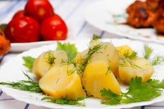 Gekochte Kartoffeln, Hühnergegrillte und in Essig eingelegte Tomaten Lizenzfreie Stockfotografie