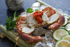 Gekochte Krabbe auf einem Bett des Eises Stockfotos