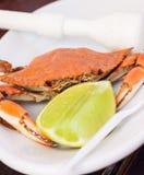 Geschmackvolle gekochte Krabbe lizenzfreie stockbilder