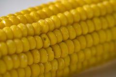 Gekochte Maiskörner Stockfoto
