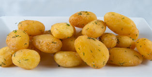 Gekochte und gebratene Kartoffeln Stockfotos