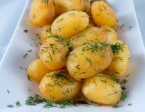 Gekochte und gebratene Kartoffeln Lizenzfreie Stockfotos