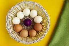 Gekochte und rohe Eier im weißen Korb auf gelbem Hintergrund Lizenzfreies Stockfoto