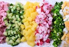 Gekochte Wurst, Gurke, Kartoffel, Rettich, Grün und Ei gehackt in Stückchen und in Reihen gelegt stockbild