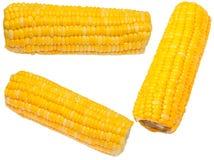 Gekochter Mais Stockfoto
