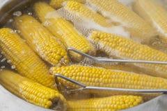 Gekochter Mais für Verkauf Stockfoto