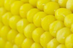 Gekochter Mais. Hintergrund Stockfotos