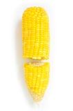 Gekochter Mais lokalisiert auf Weiß Lizenzfreie Stockfotos