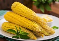 Gekochter Mais mit Salz und Butter stockbilder