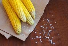 Gekochter Mais mit Seesalz auf dem Pergament Stockfoto