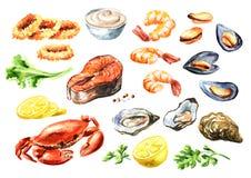 Gekochter Meeresfrüchtesatz mit Lachsen, Kalmar, Krabbe, Miesmuscheln, Austern, Garnele, Zitrone und Grüns, Aquarellhandgezogene  lizenzfreie abbildung