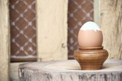 Gekochtes Ei auf hölzernem Stand Stockbilder