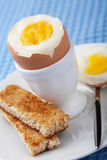 Gekochtes Ei im Eierbecher Lizenzfreie Stockfotografie