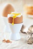 Gekochtes Ei zum Frühstück Lizenzfreie Stockfotografie
