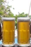 Gekoeld bier op een zonnige dag Stock Afbeelding