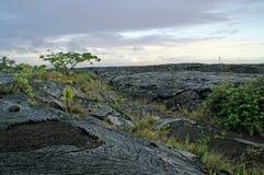 Gekoelde gesmolten lava op Hawaï stock fotografie