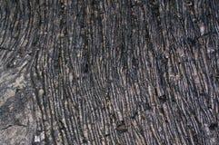 Gekoelde lava royalty-vrije stock fotografie