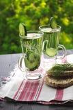 Gekohltes Tafelwasser mit Gurke, Dill und Toast auf einem Holz Lizenzfreie Stockfotografie