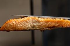 Gekookt die zalmlapje vlees in oven wordt gebakken in keukentang wordt gehouden, extreme close-uptextuur van visvlees Gezond het  royalty-vrije stock afbeelding