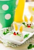 Gekookt Ei Bunny Rabbit stock afbeelding
