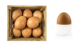 Gekookt ei dat op witte achtergrond wordt geïsoleerd? Gekookt die ei in eierdopje en eieren in houten kom worden geïsoleerd Close stock fotografie