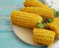 Gekookt graan, een gezond gastronomisch het voedselvoorgerecht van de plaatherfst op een blauwe houten achtergrond, peterselie royalty-vrije stock foto