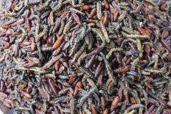 Gekookt verwarmt voor eten Royalty-vrije Stock Foto's