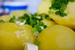 Gekookte aardappels met boter en kruiden Stock Fotografie