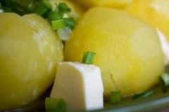Gekookte aardappels met boter en kruiden Royalty-vrije Stock Afbeelding