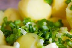 Gekookte aardappels met boter en kruiden Royalty-vrije Stock Foto