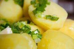 Gekookte aardappels met boter en kruiden Stock Afbeeldingen
